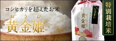 特別栽培米 黄金姫