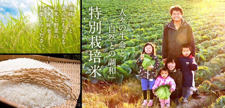 「人々の生命と自然との調和」 特別栽培米